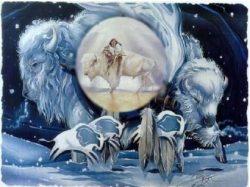 déesse bison blanc
